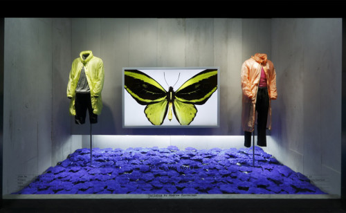 Barneys New York window display Dries Van Noten